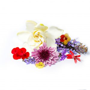 Salon Des Fleurs Simply Orchid Bouquet