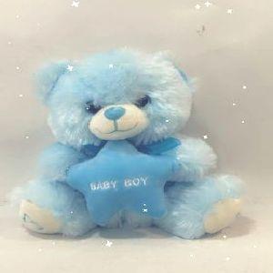 Salon Des Fleurs-Boy Teddy Bear