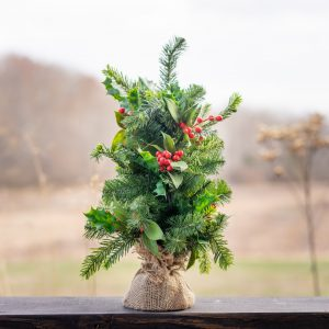 Salon Des Fleurs Christmas Evergreen Arrangement