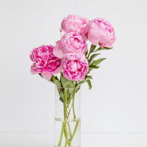 Salon Des Fleurs Peony Arrangement