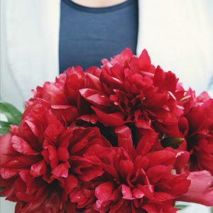 Salon Des Fleurs Red Kalanchoe
