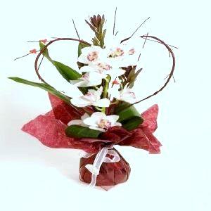 Salon Des Fleurs-Salon Des Fleurs-Love Bouquet