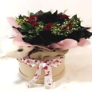 Salon Des Fleurs-Gift for You
