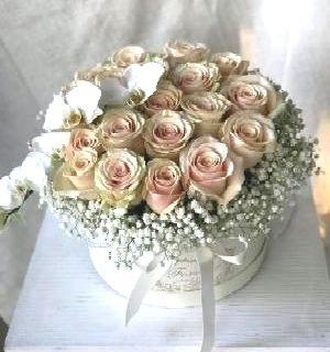 Salon Des Fleurs-Light Pink Elegance