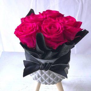 Forever Fuchsia-Salon Des Fleurs
