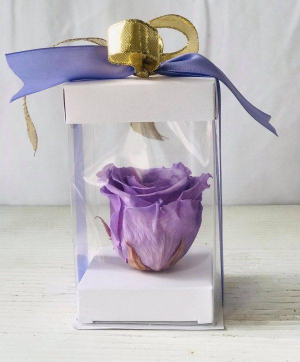 Single Lavender Forever Rose-Salon Des Fleurs
