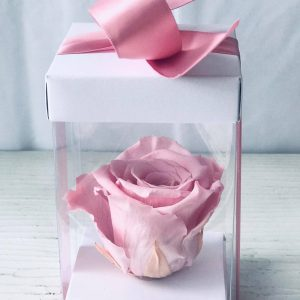 Single Pink Forever Rose-Salon Des Fleurs