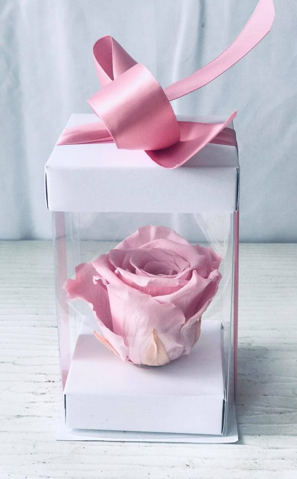 Single Pink Forever Rose-Salon Des Fleurs